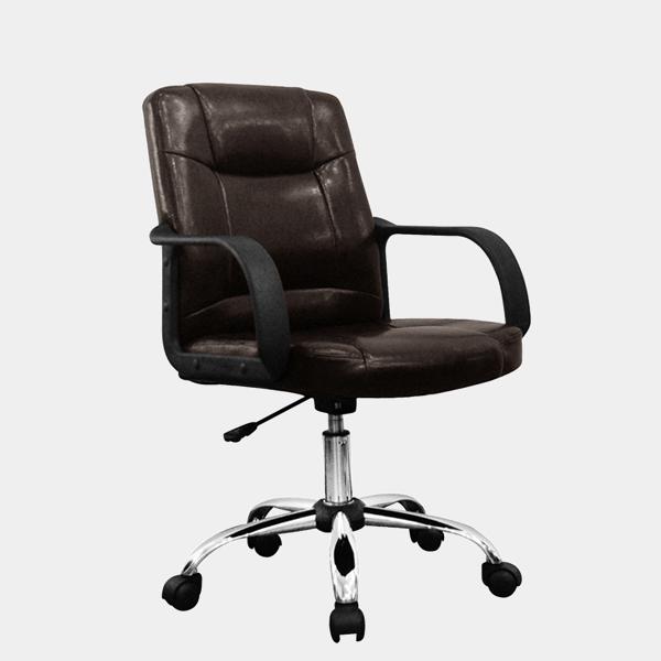 เก้าอี้สุขภาพ รุ่น CRC-02M